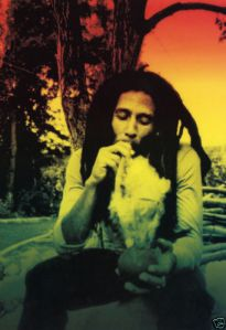 """""""Ik heb kanker overwonnen!"""" - een citaat dat cannabis-icoon Bob Marley nooit heeft gezegd."""