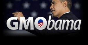 Een banner die zonder enig bewijs tracht te impliceren dat Amerikaans president Obama een belangenconflict zou hebben met de biotech-industrie.