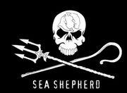 Het logo van Sea Shepherd. Hoezo, piraten?
